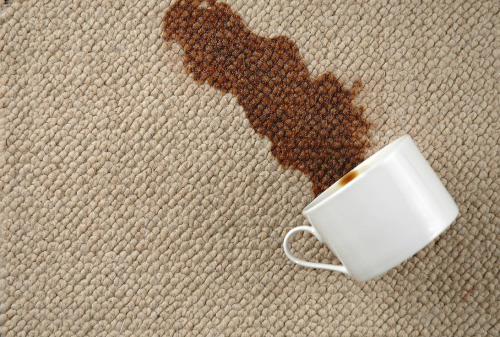 Image result for dirty carpet